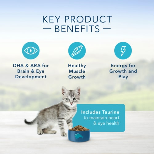 Blue Buffalo Healthy Growth Chicken & Brown Rice Dry Kitten Food Perspective: right