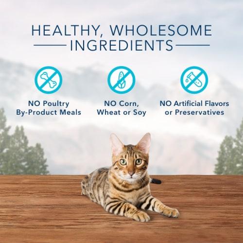 Blue Buffalo Wilderness Tasty Chicken Flavor Crunchy Cat Treats Perspective: right
