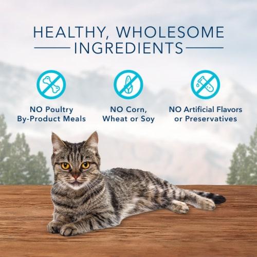 Blue Buffalo Wilderness Grain Free Chicken & Salmon Recipe Soft-Moist Cat Treats Perspective: right