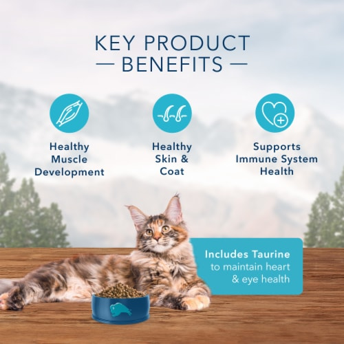 Blue Wilderness High Protein Chicken Natural Adult Dry Cat Food Perspective: right