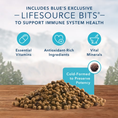 Blue Wilderness High Protein Chicken Natural Mature Dry Cat Food Perspective: right