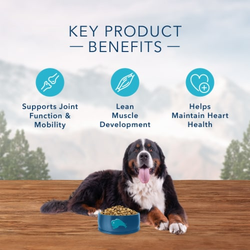 Blue Wilderness High Protein Chicken Large Breed Natural Adult Dry Dog Food Perspective: right