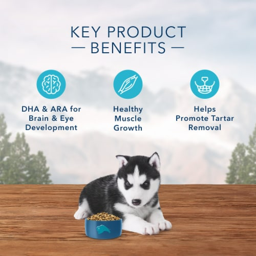 Blue Wilderness High Protein Chicken Natural Puppy Dry Dog Food Perspective: right