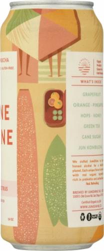 JuneShine Hopical Citrus Hard Kombucha Perspective: right