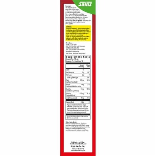Floradix Iron + Herbs Vegetarian Liquid Herbal Supplement Perspective: right