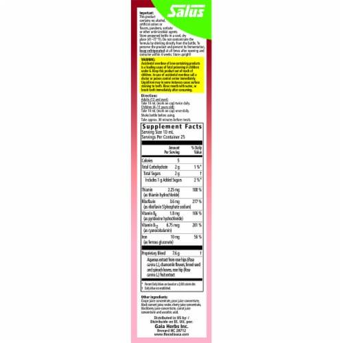 Floradix Floravital Iron + Herbs Liquid Herbal Supplement Perspective: right