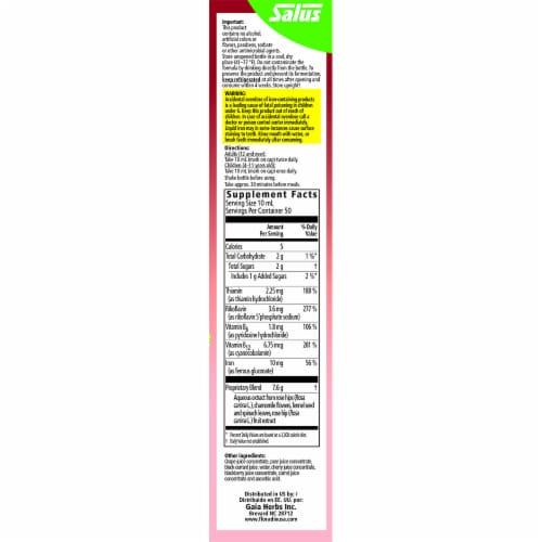 Floradix Iron & Herbs Yeast-Free Vegan Liquid Herbal Supplement Perspective: right