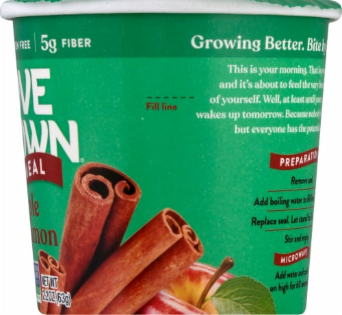 Love Grown Apple Cinnamon Hot Oats Perspective: right