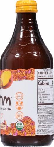 Humm Kombucha Mango Passion Fruit Probiotic Kombucha Perspective: right