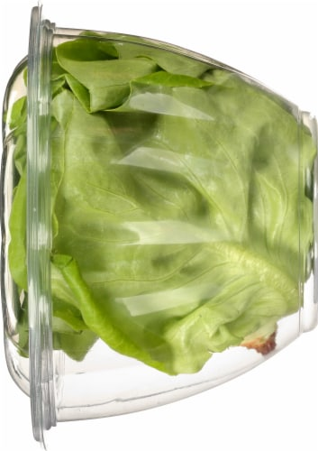 Gotham Greens Baby Butterhead Lettuce Perspective: right