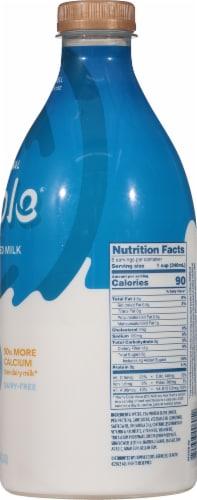 Ripple Original Dairy-Free Pea Milk Perspective: right