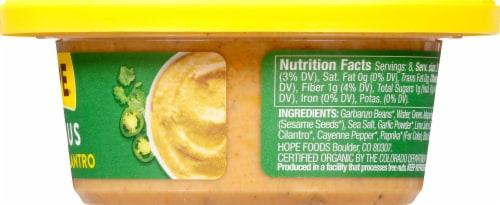 Hope Foods Organic Jalapeno Cilantro Hummus Perspective: right