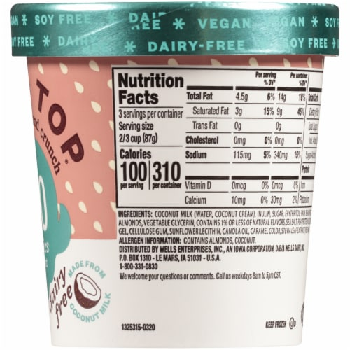 Halo Top Dairy-Free & Soy-Free Vegan Chocolate Almond Crunch Frozen Dessert Perspective: right