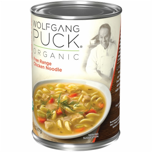 Wolfgang Puck Free Range Chicken and Egg Noodles Soup Perspective: right