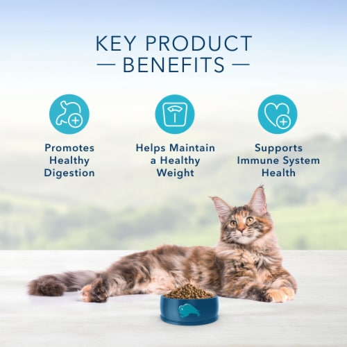 Blue Buffalo Indoor Health Chicken & Brown Rice Adult Dry Cat Food Perspective: right