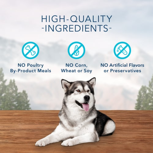Blue Wilderness Trail Treats Salmon Recipe Grain-Free Biscuits Biscuits Dog Treats Perspective: right