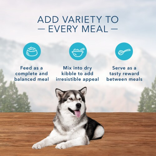 Blue Wilderness High Protein Beef & Chicken Grill Natural Adult Wet Dog Food Perspective: right