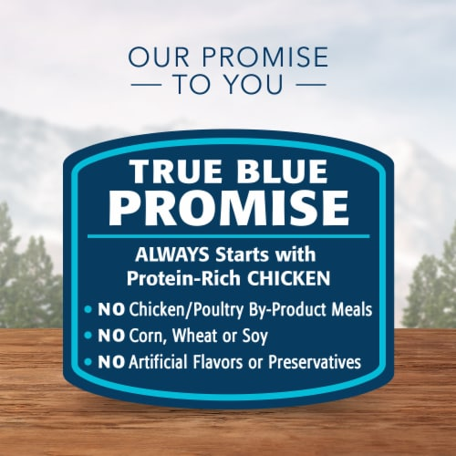 Blue Wilderness High Protein Grain Free Chicken Recipe Natural Kitten Pate Wet Cat Food Perspective: right