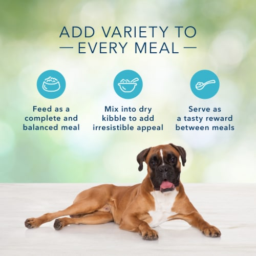 Blue Buffalo Freedom Grain-Free Chicken Recipe Dog Food Perspective: right
