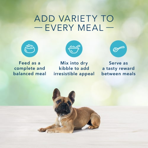 Blue Buffalo Freedom Grain-Free Chicken Recipe for Small Breed Dog Food Perspective: right