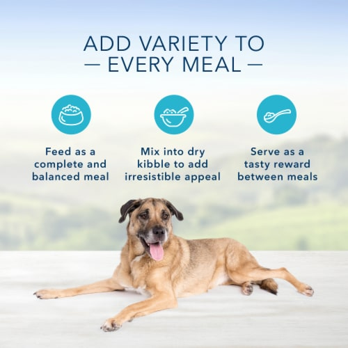 Blue Buffalo Homestyle Recipe Chicken Dinner Flavor Senior Wet Dog Food Perspective: right