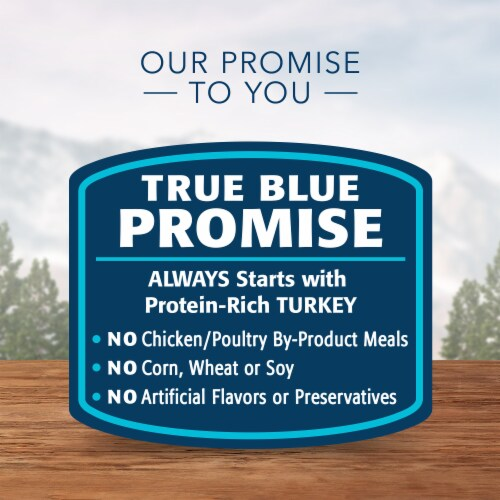 Blue Wilderness Turkey Recipe Adult Wet Cat Food Perspective: right
