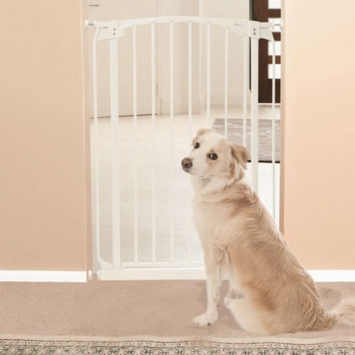 Dreambaby L782W Chelsea 28 to 42.5 Inch Auto-Close Baby Pet Safety Gate, White Perspective: right