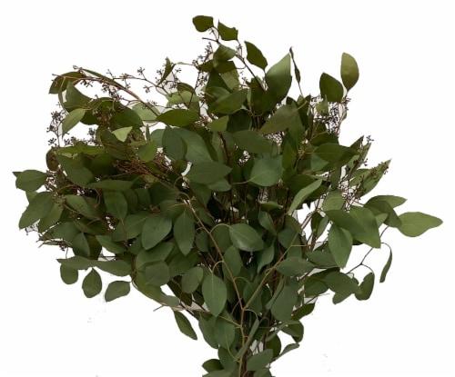 Eucalyptus Assortment Perspective: right