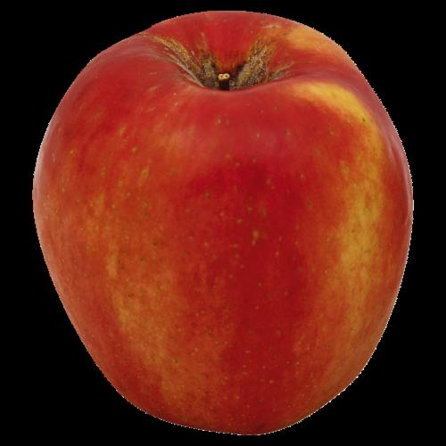 SweetTango™ Apple Perspective: top