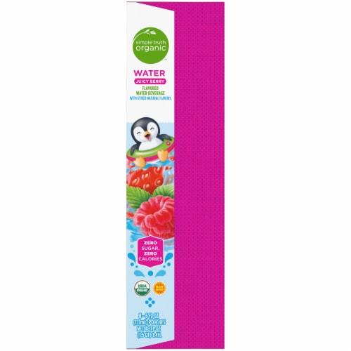 Simple Truth Organic™ Juicy Berry Flavored Water Beverage Perspective: top