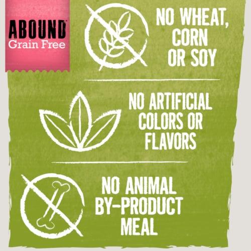 Abound® Grain Free Salmon & Sweet Potato Recipe Adult Dog Food Perspective: top