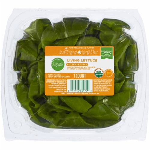 Simple Truth Organic™ Living Butter Lettuce Perspective: top