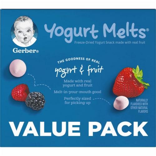 Gerber® Yogurt Melts Freeze-Dried Yogurt Snacks Perspective: top