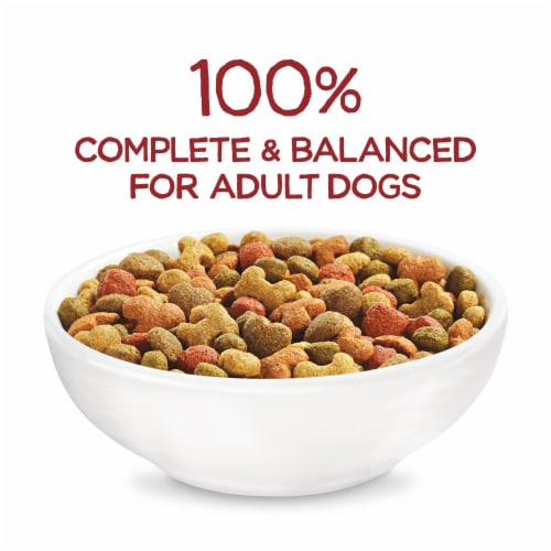 Purina Beneful Originals with Real Beef Adult Dog Food Perspective: top