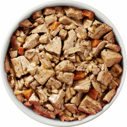 Purina ONE SmartBlend Tender Cuts Chicken & Brown Rice Entree in Gravy Adult Wet Dog Food Perspective: top