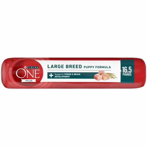 Purina ONE SmartBlend Large Breed Puppy Formula Dry Dog Food Perspective: top