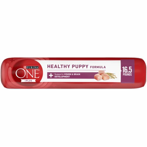 Purina ONE SmartBlend Healthy Puppy Formula Natural Dry Puppy Food Perspective: top
