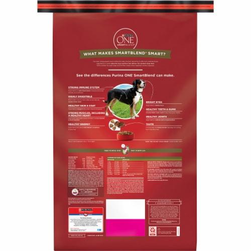 Purina ONE® SmartBlend® Lamb & Rice Formula Natural Dry Dog Food Perspective: top