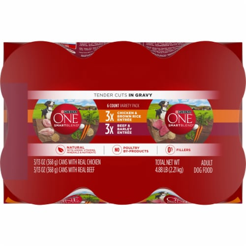 Purina ONE SmartBlend Tender Cuts in Gravy Wet Dog Food Variety Pack Perspective: top