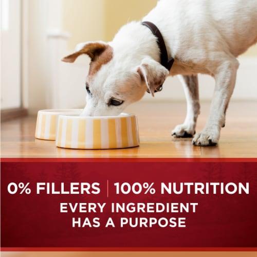 Purina ONE SmartBlend True Instinct Real Chicken & Duck in Gravy Adult Wet Dog Food Perspective: top