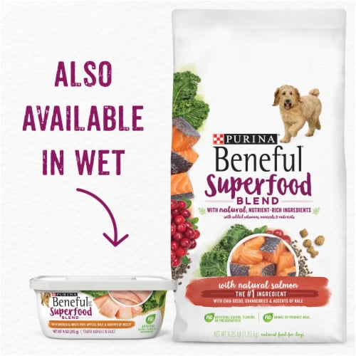 Beneful Superfood Blend Salmon Dry Dog Food Perspective: top