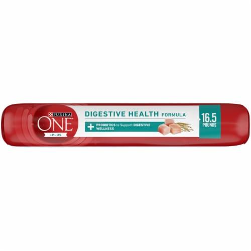 Purina ONE SmartBlend Digestive Health Formula Dry Adult Dog Food Perspective: top