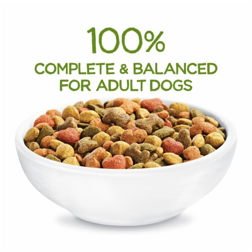 Beneful Healthy Weight with Real Chicken Adult Dry Dog Food Perspective: top