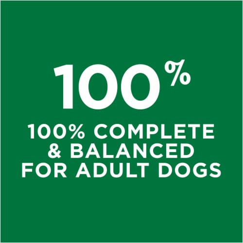 Dog Chow Complete with Real Chicken Adult Dry Dog Food Perspective: top