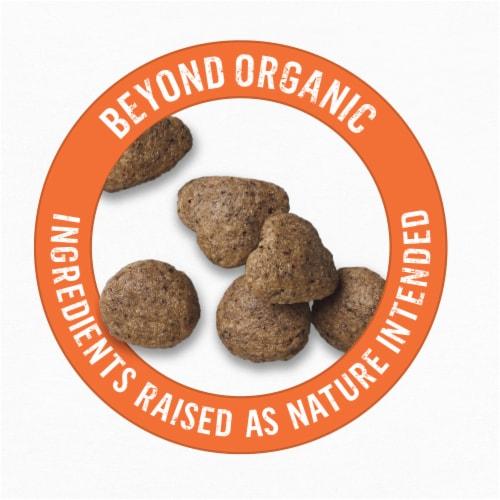 Beyond Organic Chicken Egg & Sweet Potato Dry Cat Food Perspective: top