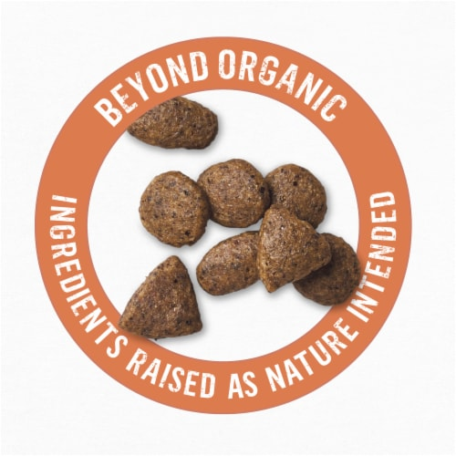 Beyond Organic Chicken Egg & Sweet Potato Adult Dry Dog Food Perspective: top