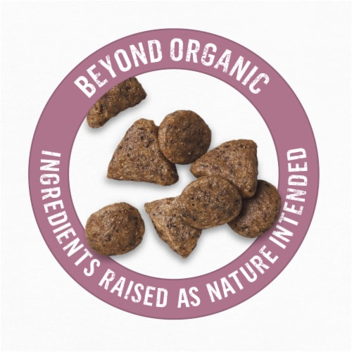 Beyond Organic Chicken Egg & Carrot Recipe Dry Small Dog Food Perspective: top