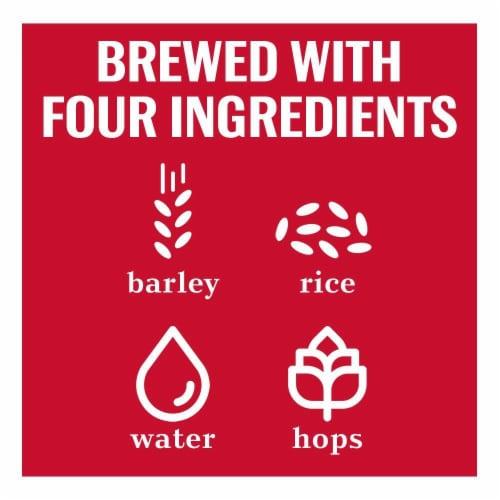 Budweiser Beer Perspective: top