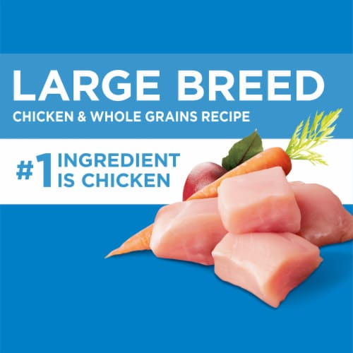 IAMS™ Healthy Weight Real Chicken Large Breed Dry Adult Dog Food Perspective: top