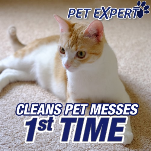 Resolve Pet Expert Stain & Odor Remover Perspective: top